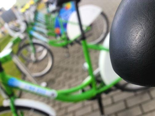 rower w szczecinie